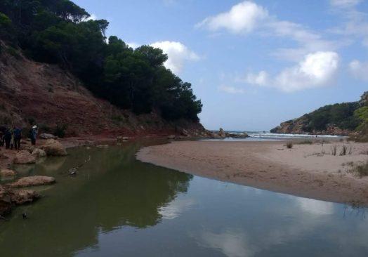 Algaiarens y Sa Bassa Verde (8,2km)